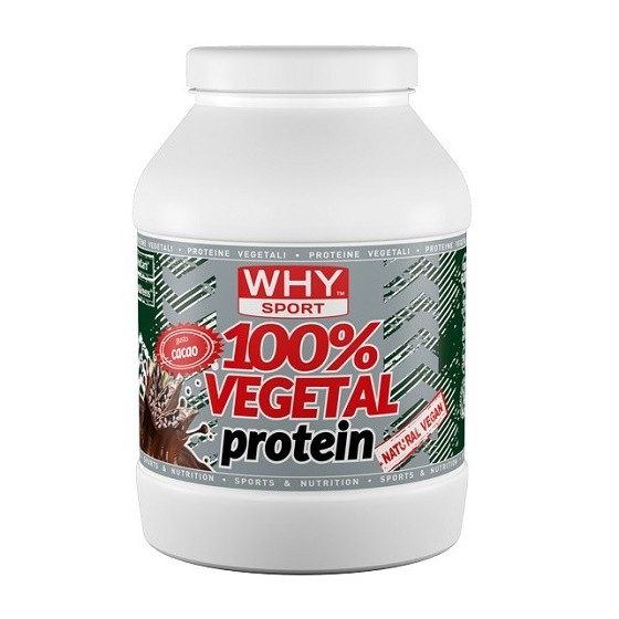 100% VEGETAL PROTEIN CACAO...